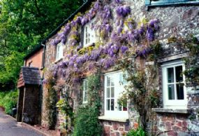 Fursdon Cottage Dog Friendly Holidays Thorverton Devon